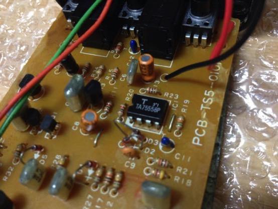 アイバニーズ TS5 IMG 5909